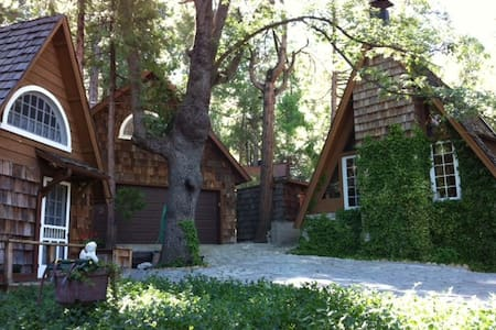 Quiet Loft Studio Unit in Forest - Idyllwild-Pine Cove - Loft