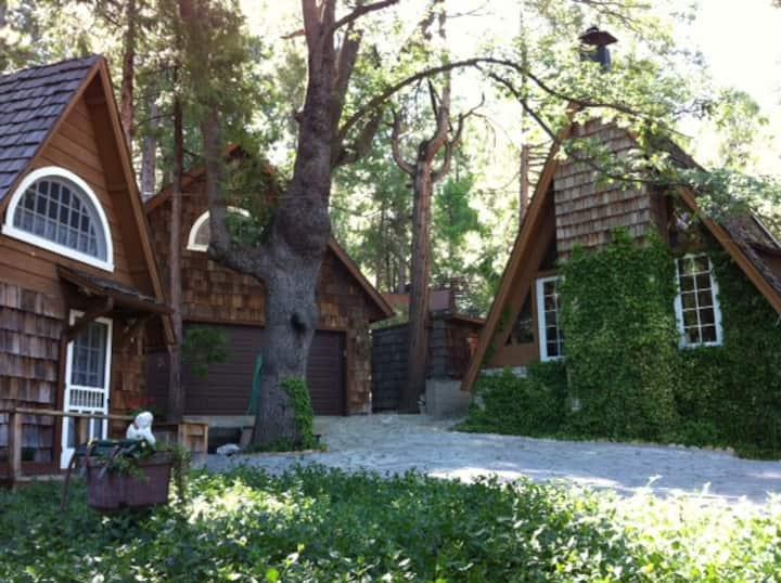 Quiet Loft Studio Unit in Forest
