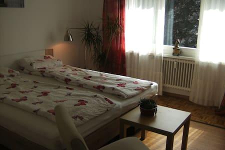 Zimmer in der Nähe des Bodensee - Kreuzlingen - Huoneisto