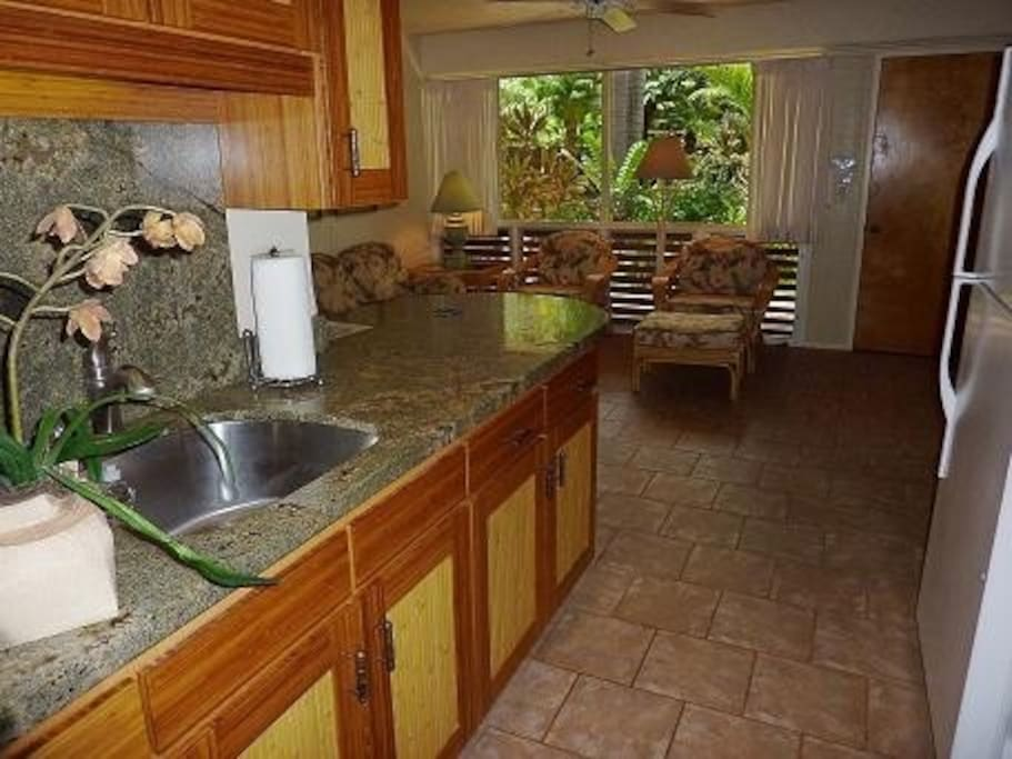 Granite kitchen with new cabinets