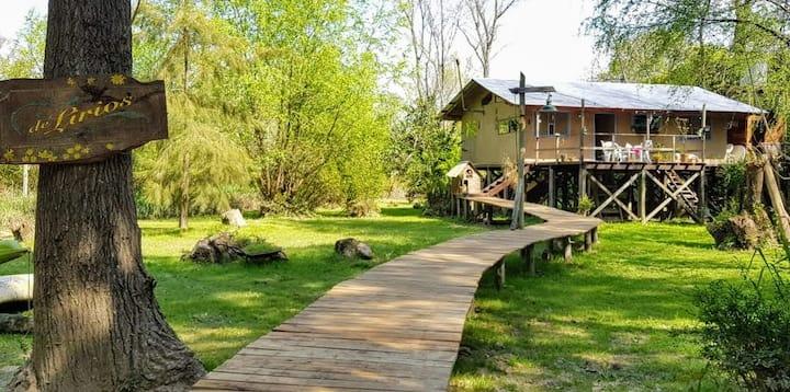 Casa ecológica en la isla, delta, Tigre