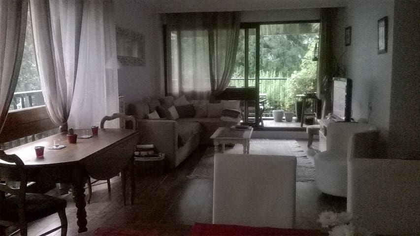 Appartement 75 m2, 2 chbres +Loggia sud Versailles - Le Chesnay - Apartment