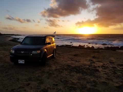 Easy Hawaiian Camping Van