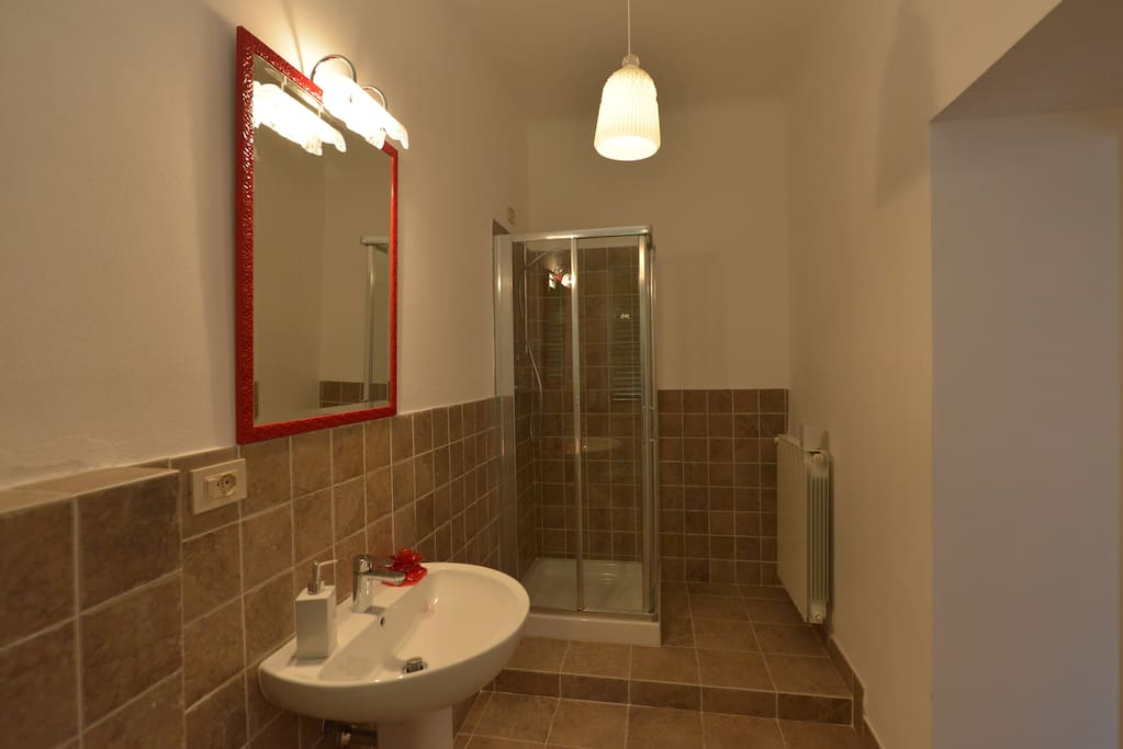 Ensuite bathroom with shower, newly renovated