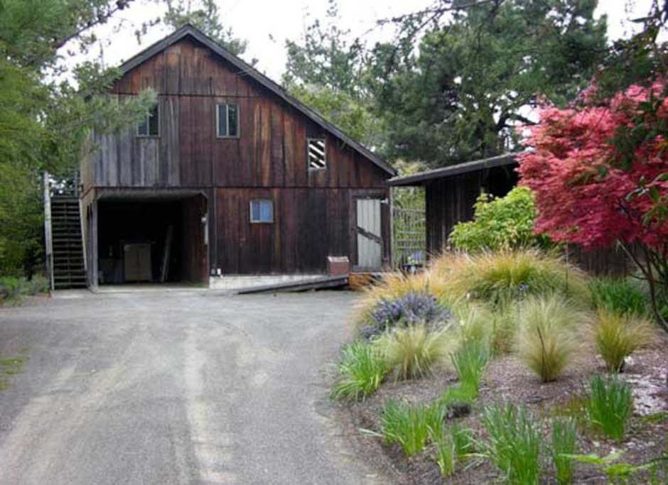 mendocino mature singles Zillow has 16 single family rental listings in mendocino county ca use our detailed filters to find the perfect place, then get in touch with the landlord.