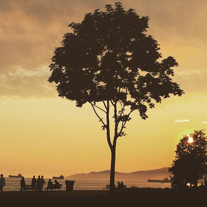 Walk to Sunsets in English Bay