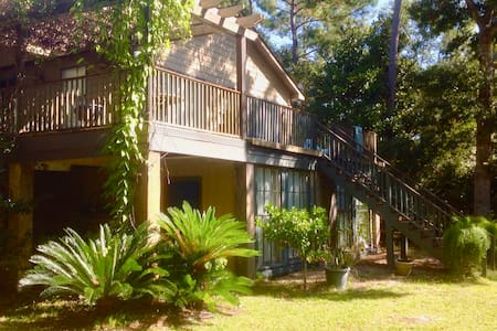 Waterfront Retreat on the Abbapoola - Johns Island - Apartment - 1