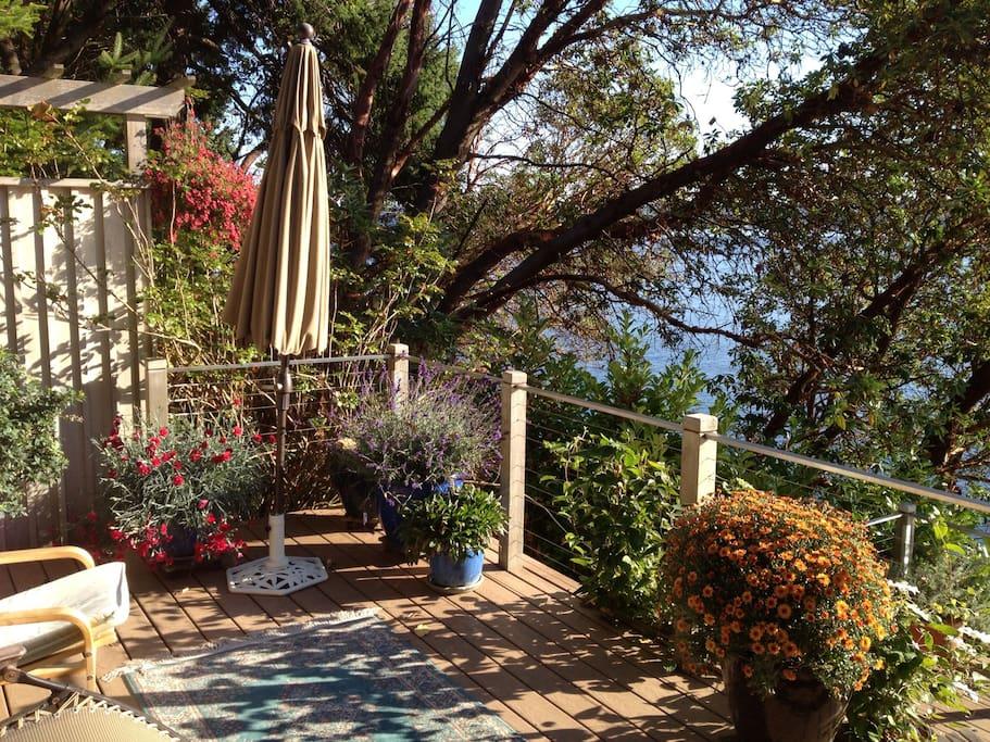 Decks have wonderful plantings in season.