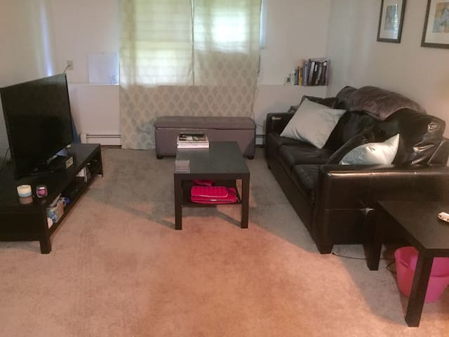 Cozy, 1 Bedroom Apt. in Portland - Portland - Pis