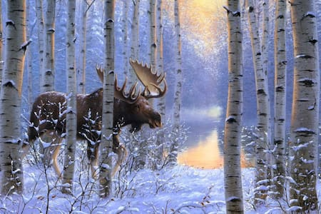 Wintering Moose Guest Suite
