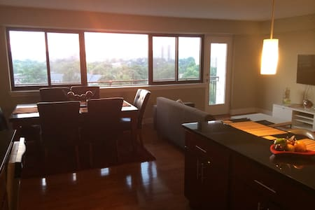 Luxury 1BR Penthouse $1699 Month