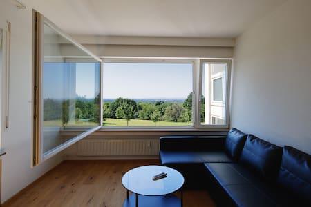 appartement de luxe près clinique - Baden-Baden - Apartamento