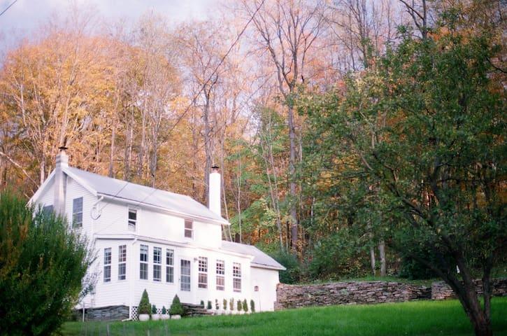 Peakville Haus: 1890s Cottage