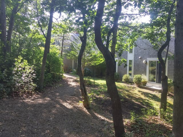 Contemporary in Chilmark Woods