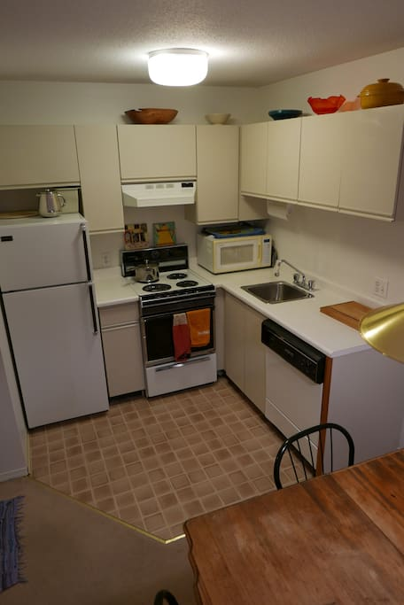 Fully equipped kitchen with fridge, stove and dishwasher