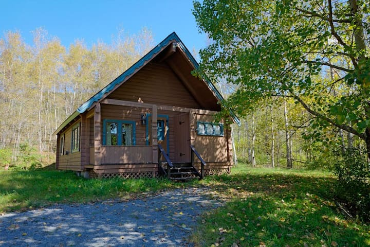 Perfect Cabin- Pre-booking for Skiing Belleayre!
