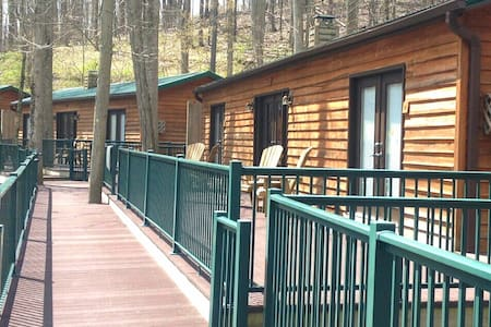 Relaxing cabin in Elkins, West Virginia - Elkins - キャビン