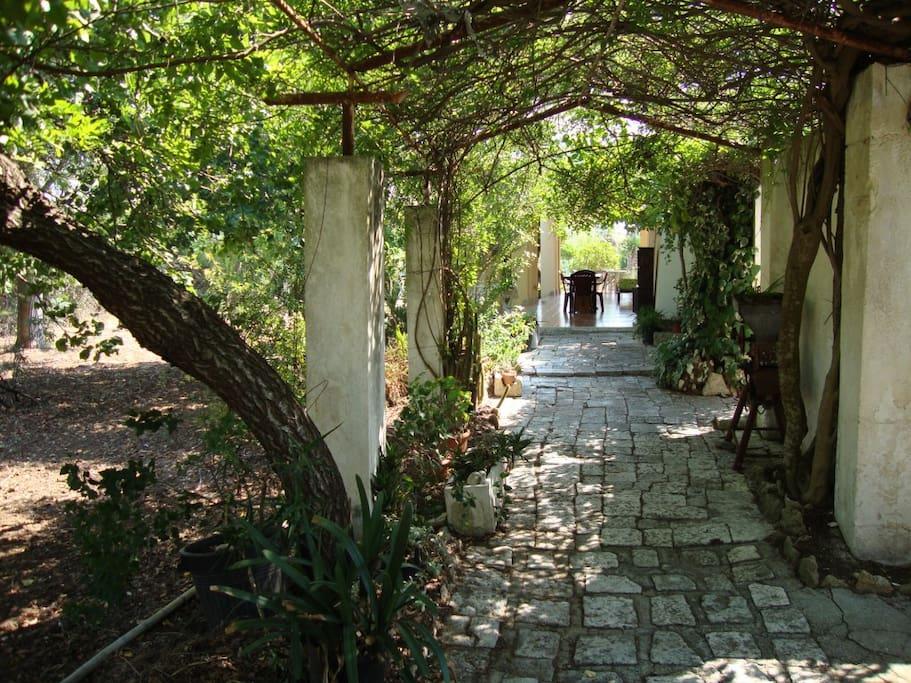 lungo pergolato  con veranda