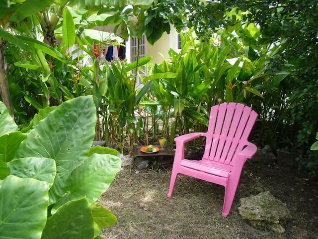 enjoy sitting in the shade