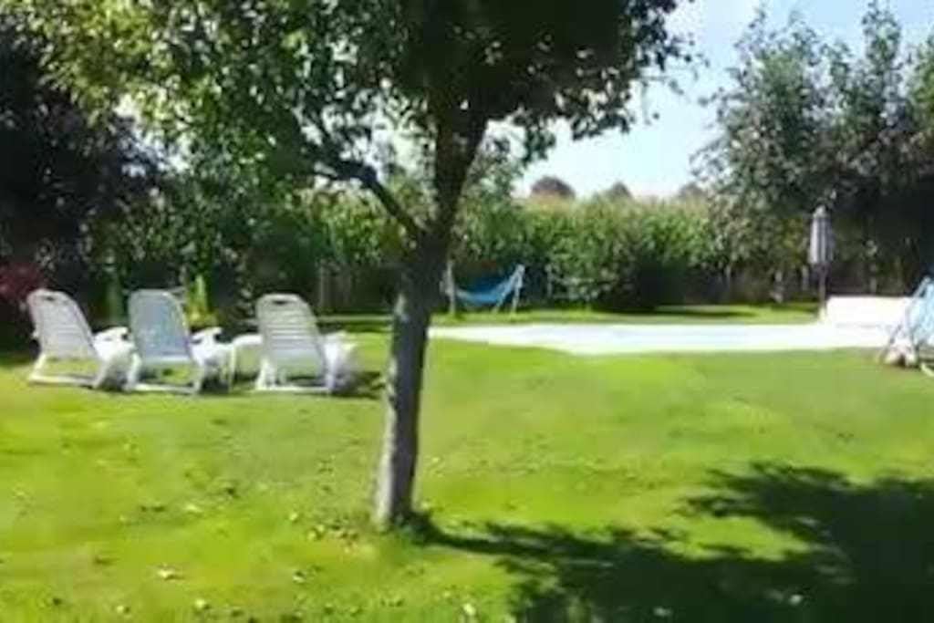 garden view of our pool