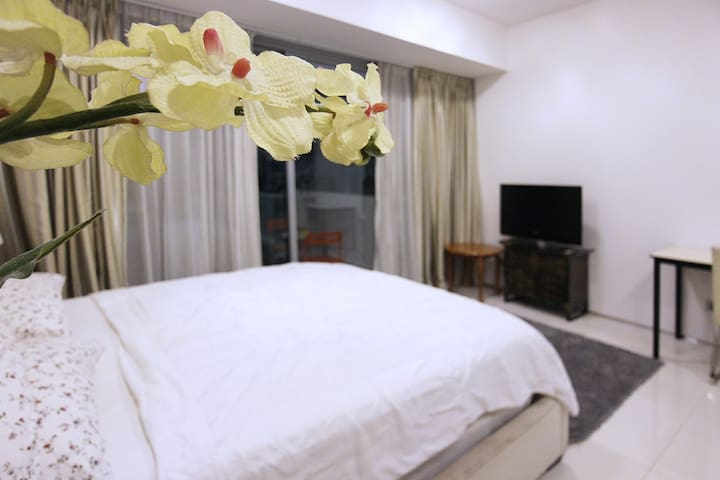 Leisure Studio APT 5 mins from Tg Pagar MRT