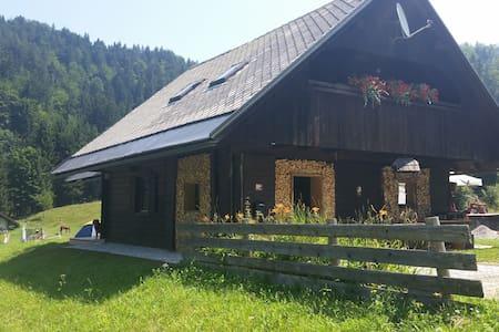 Apartment-Cabin Bled-Pokljuka - Krnica