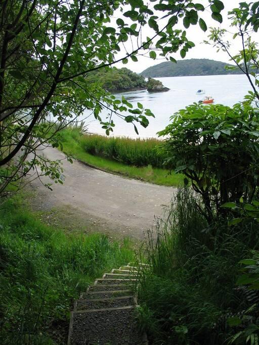 Pathway to Beach and Horseshoe Bay walking track