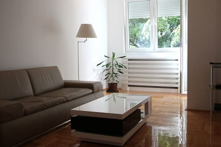 Designer Apartment with River View in City Center - Niš - Apartmen