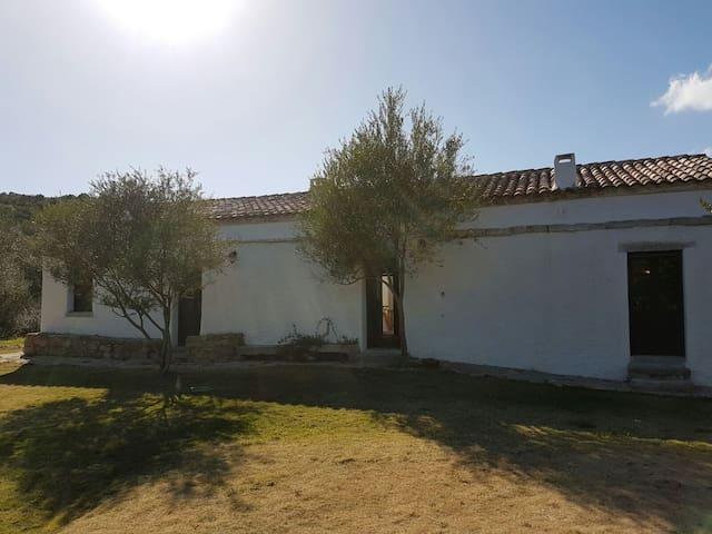 Historical Sardinian Stazzu in Gallura - Telti