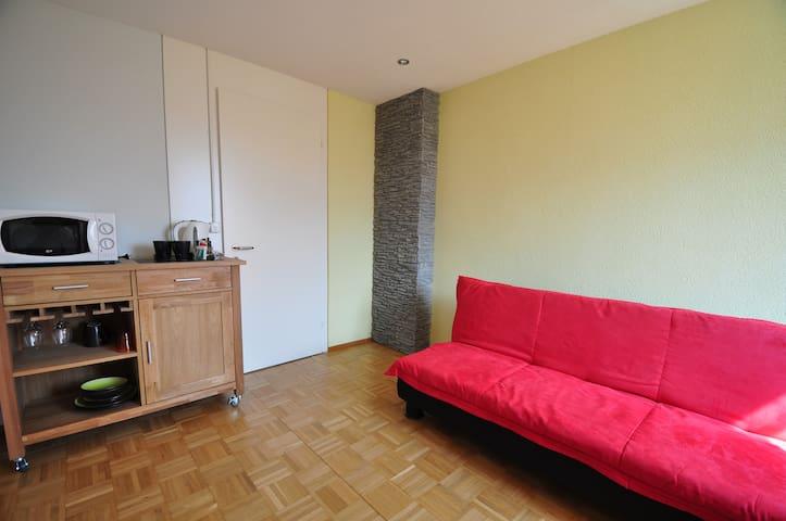 2 Zimmer mit WC + Gartensitzplatz - Hergiswil - Casa