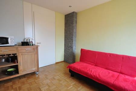 2 Zimmer mit WC + Gartensitzplatz - Hergiswil