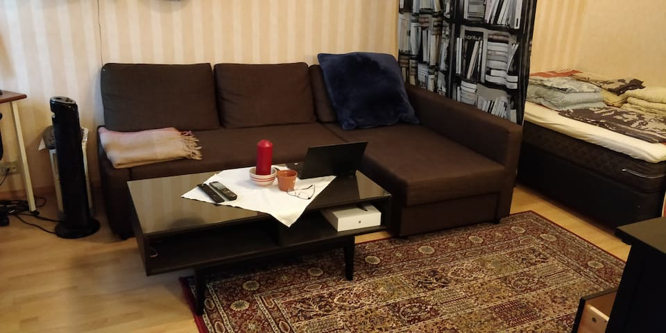 Sofa-bed in the living room. You can make it a queen-size bed. And under the divan there is extra sheets, blanket, and pillow cases.