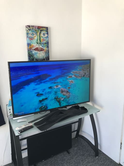 50 Inch Smart TV / Netflix / YouTube / Internet etc but no Cable
