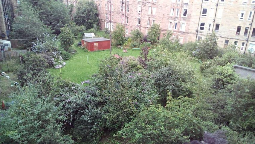 Communal back garden with BBQ
