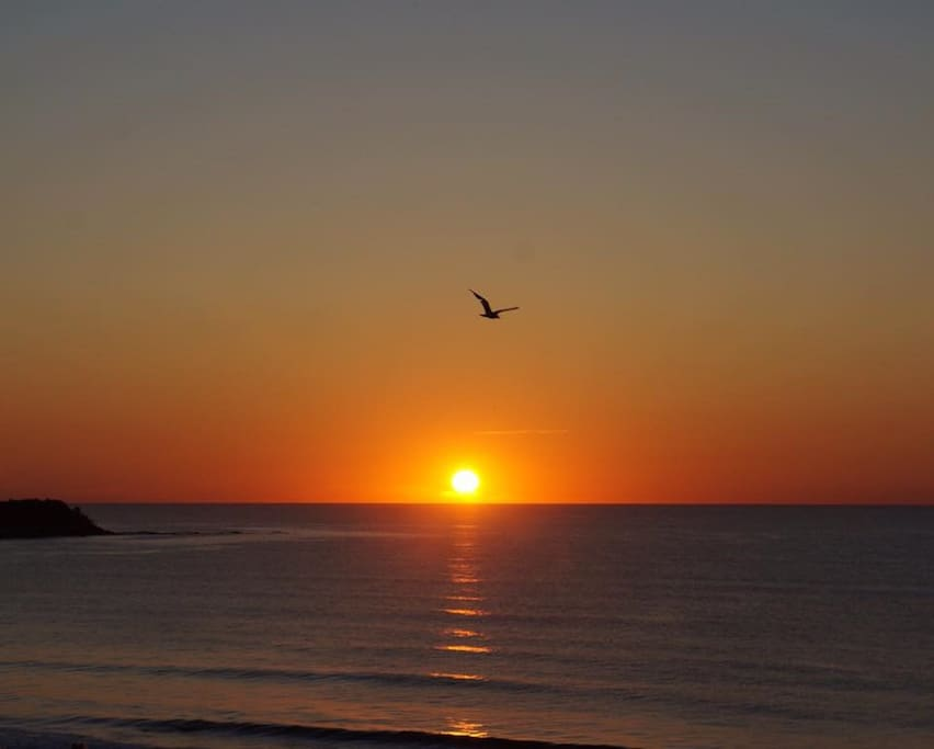 Sunrises and coffee from your oceanfront deck!