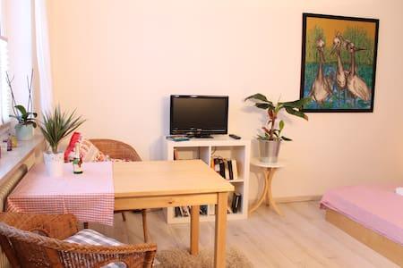 Gemütliches, süßes ❤ zentrales  Appartment - München - Apartment