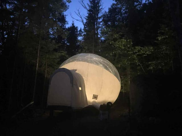 The Forest Bubble Tent