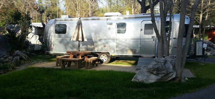 Mama Bear Airstream  Motor Lodge