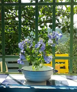 """Plumbago""  studio in the garden - San Miniato - House"
