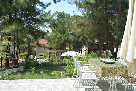 Orman içinde Urla'da bir villa - Urla