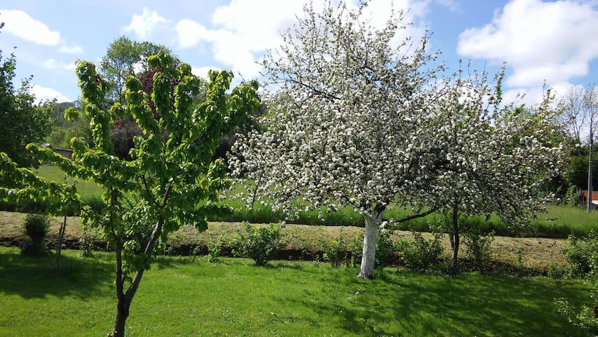 Maison avec grand jardin - Saint-Siméon-de-Bressieux - บ้าน