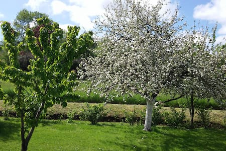 Maison avec grand jardin - Saint-Siméon-de-Bressieux
