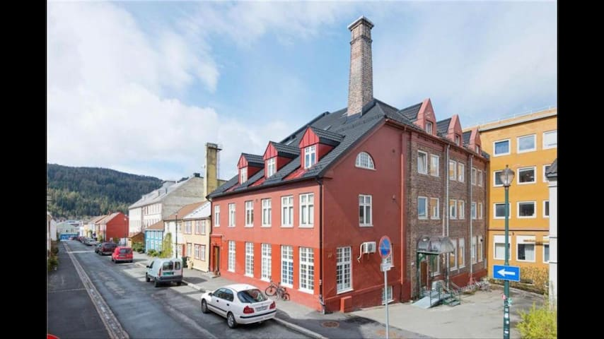 Big apartment in the heart of Trondheim:)
