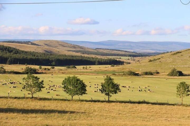 """Gîte rural de """"Cavaladette"""" - Causse Méjean Sud - Florac - Haus"""