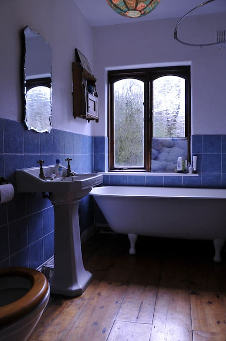 bathroom with free-standing bath and power shower