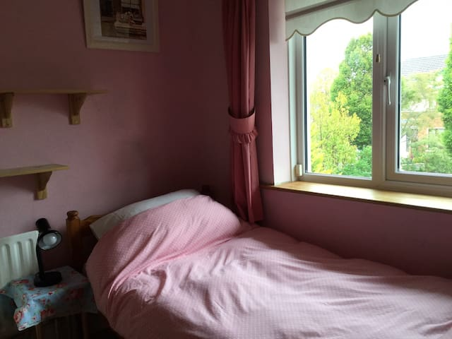 Private Single bedroom in  Castleknock