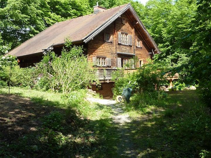 Möbliertes Zimmer in Bio-Holzhaus
