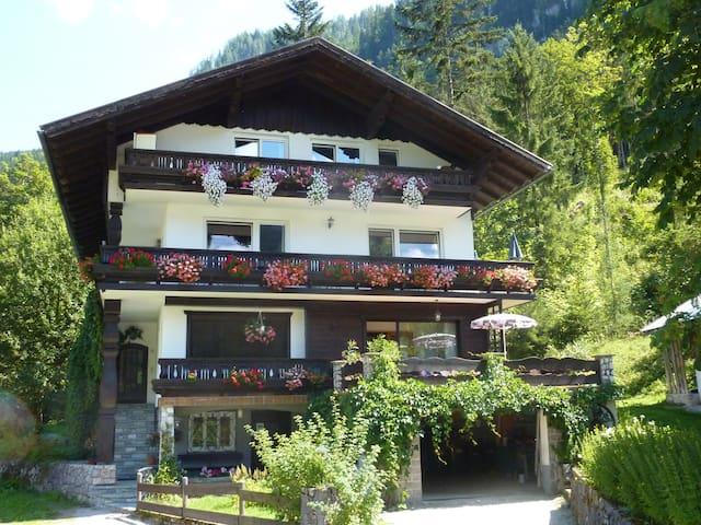 Haus Linhard Gosau-Dachstein West  - Gosau - Apartment