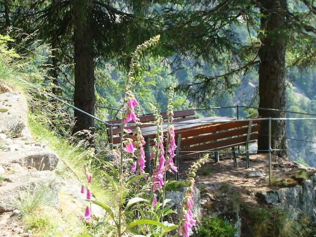Randonnée : Sentier des roches