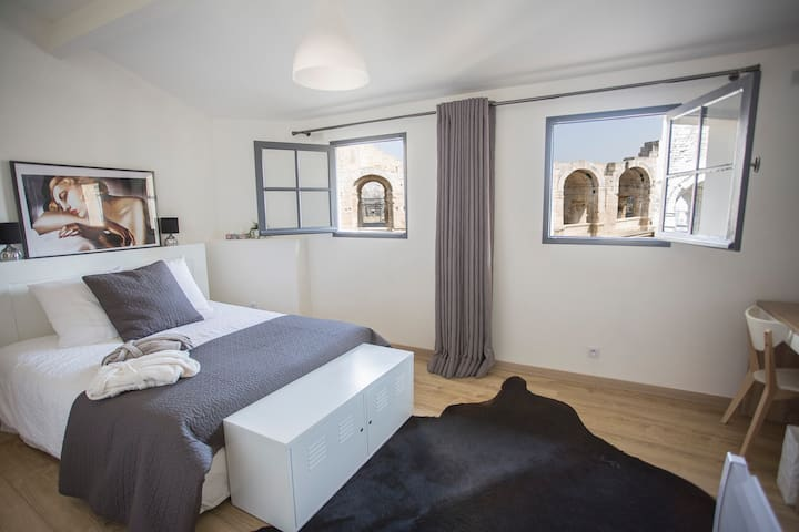 Luxury apartment facing roman arena - free parking - Arles - Pis